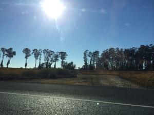 The Road leaving Napa